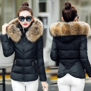 Women Winter Jacket Fur Collar Hooded Winter Jacket Women Short Slim Cotton Padded Outwear Female Coat